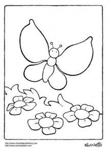 پروانه و گلها